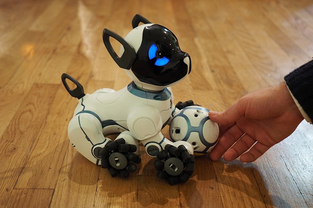 Chip - The Robotic Dog